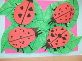 Year 3 & 4 Minibeasts Topic